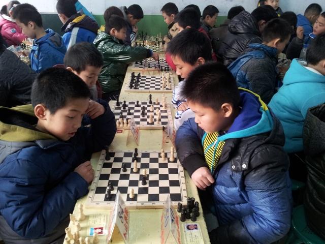 泰安市举办少年儿童中国象棋,围棋,国际象棋比赛图片