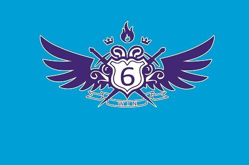 宋刘小学11个中队都设计出了具有本中队特色的班旗.图片